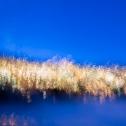 bewegt-mausfeld-blau-lichter