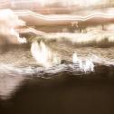 bewegt-mausfeld-silberstreifen