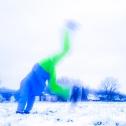 sequenzen-mausfeld-winterblau-2